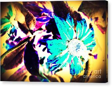 Poppiins Canvas Print