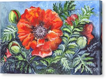 Poppy Brilliance Canvas Print by Carol Wisniewski