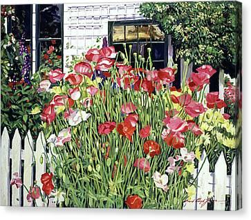 Canvas Print -  Poppy Fence by David Lloyd Glover