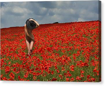 Poppy Field 1 Canvas Print by RTP Fine Art Photography