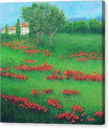Poppy Field In Italy Canvas Print