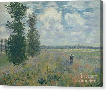 Poppy Fields Near Argenteuil, 1875 Canvas Print