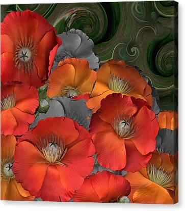 Poppy Canvas Print by Stan Bowman