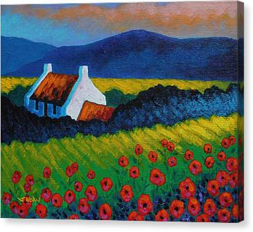 Poppy Meadow Canvas Print by John  Nolan