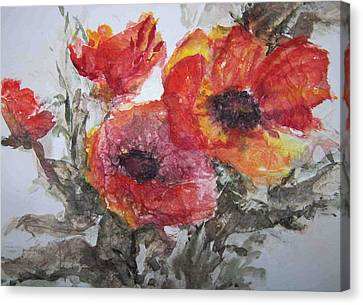 Poppy Parade Canvas Print by Sandy Collier