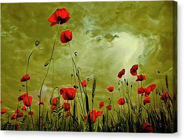 Modern Digital Art Digital Art Canvas Print - Poppy Petals by  Fli Art