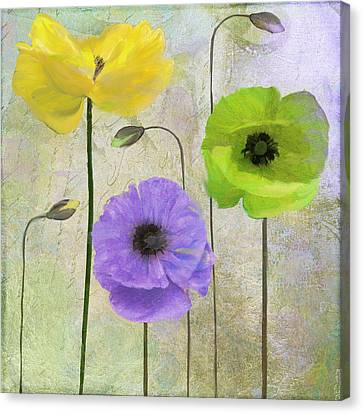 Poppy Shimmer II Canvas Print by Mindy Sommers