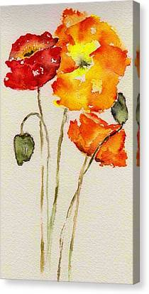 Poppy Trio Canvas Print by Anne Duke