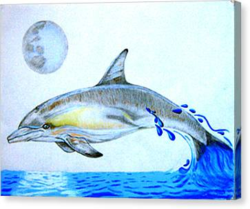 Canvas Print featuring the drawing Porpoise by Mayhem Mediums