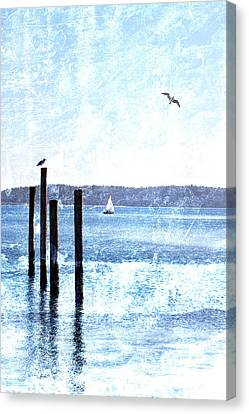 Sound Canvas Print - Port Townsend Pilings by Carol Leigh