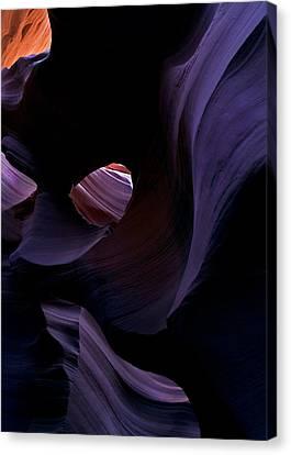 Portal Canvas Print by Mike  Dawson
