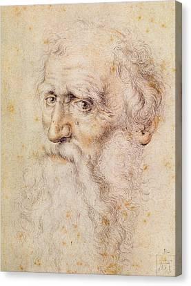 Albrecht Canvas Print - Portrait Of A Bearded Old Man by Albrecht Durer or Duerer