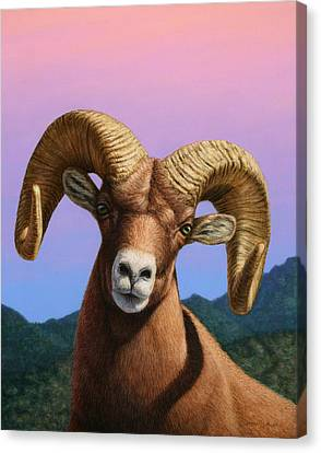 Portrait Of A Bighorn Canvas Print by James W Johnson