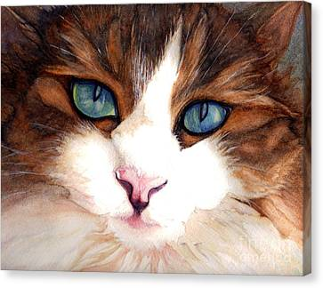 Chat Canvas Print - Portrait Of A Cat by Janine Riley