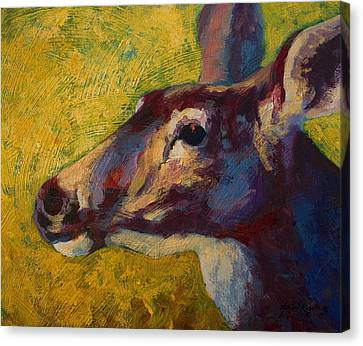 Portrait Of A Doe Canvas Print by Marion Rose