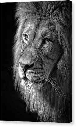 Portrait Of A King Canvas Print