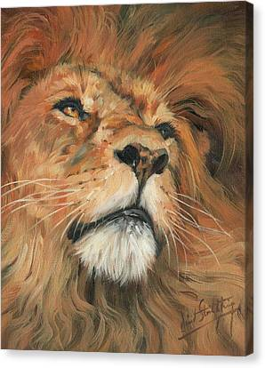 Canvas Print featuring the painting Portrait Of A Lion by David Stribbling
