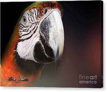 Portrait Of A Parrot Canvas Print