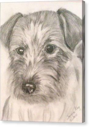 Portrait Of A Scottish Terrier Canvas Print