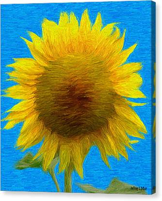 Portrait Of A Sunflower Canvas Print