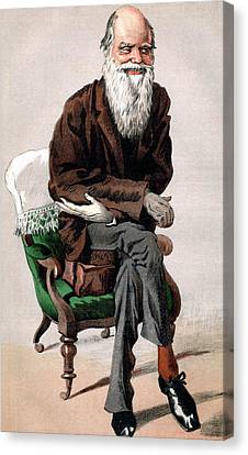 Portrait Of Charles Darwin Canvas Print by James Jacques Joseph Tissot