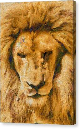 Canvas Print featuring the photograph Portrait Of Lion by Scott Carruthers