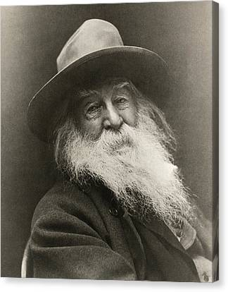 Portrait Of Walt Whitman Canvas Print