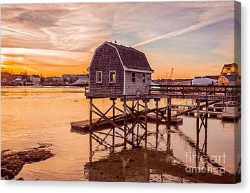 Bouys Canvas Print - Portsmouth Sunset by Edward Fielding