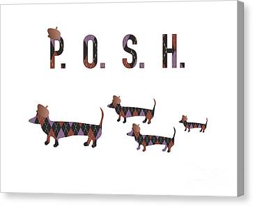 Posh Dachshunds Canvas Print by Beverley Brown