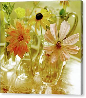 Posies Canvas Print by Bonnie Bruno