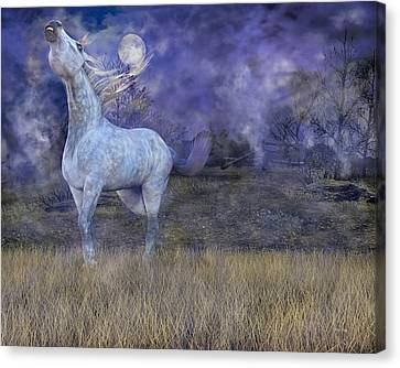 Possession  Canvas Print by Betsy Knapp