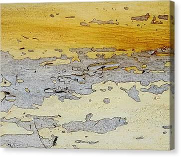 Possum Abstract Landscape 3 Canvas Print