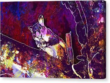 Brushtail Canvas Print - Possum Common Brushtail Possum  by PixBreak Art