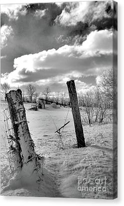 Posts In The Snow Canvas Print
