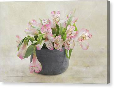 Pot Of Pink Alstroemeria Canvas Print