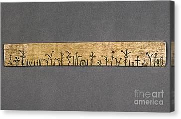 Potawatomi Medicine Stick Canvas Print by Granger