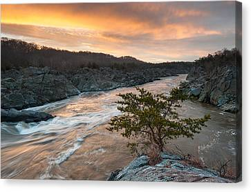 Potomac River Mather Gorge Great Falls Sunrise Canvas Print