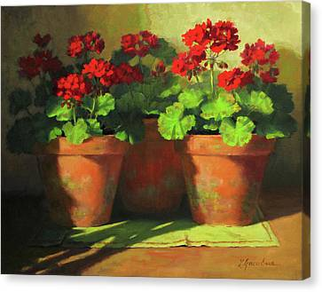 Potted Geraniums Canvas Print by Linda Jacobus