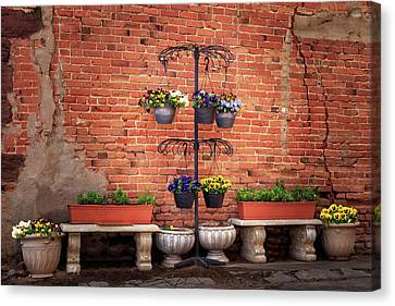 Canvas Print featuring the photograph Potted Plants And A Brick Wall by James Eddy
