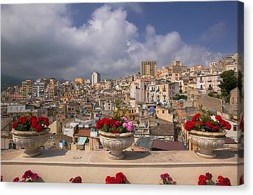 Potted Plants On The Ledge Canvas Print by Panoramic Images