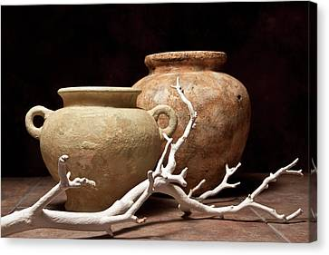 Pottery With Branch I Canvas Print