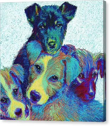 Pound Puppies Canvas Print by Jane Schnetlage