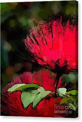 Powder Puff In Red Canvas Print by Betty LaRue