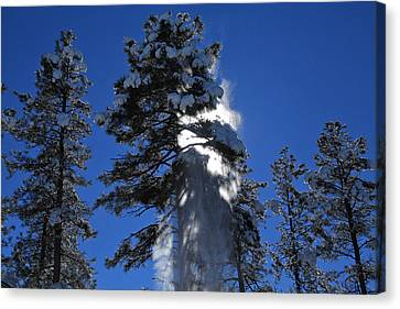 Canvas Print featuring the photograph Powderfall by Gary Kaylor