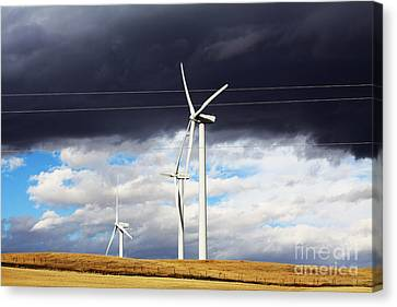 Power-full Canvas Print by Alyce Taylor