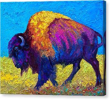 Prairie Dusk Canvas Print by Marion Rose