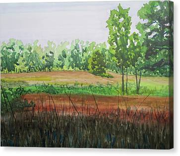Prairie Grass Field Canvas Print by Bethany Lee
