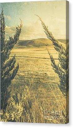 Prairie Hill Canvas Print