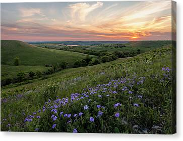 Prairie In Bloom Canvas Print