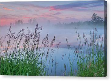 Canvas Print featuring the photograph Prairie Pond Before Sunrise by Dan Jurak
